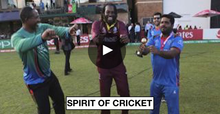 WATCH: Chris Gayle, Mohammad Shahzad dance to 'champion' song after Afghanistan wins the ICC World Cup Qualifiers 2018