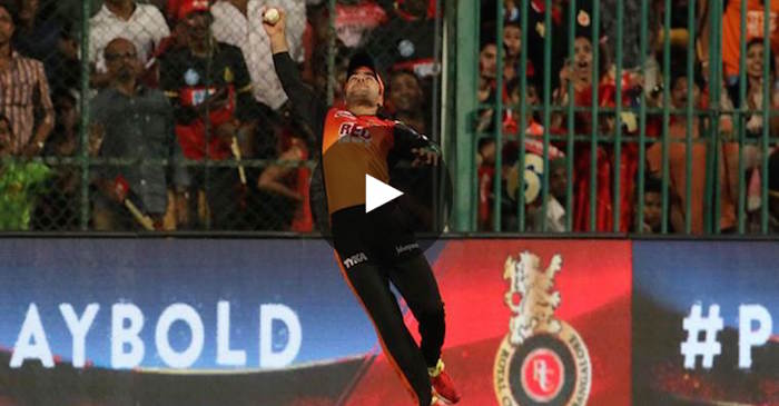 WATCH: Rashid Khan grabs a one-handed stunner to dismiss Colin de Grandhomme