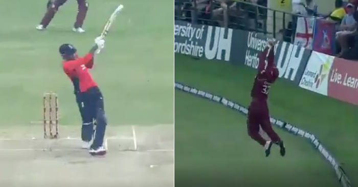 WATCH: John Campbell takes a stunner near the boundary to dismiss Alex Hales