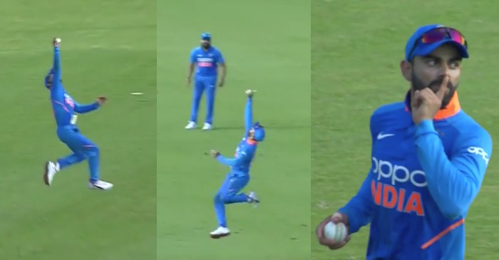 West Indies vs India 2019: Virat Kohli takes a one-handed screamer to dismiss Evin Lewis
