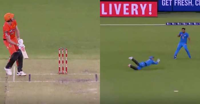 WATCH: Alex Carey takes a sensational diving catch in Big Bash League match