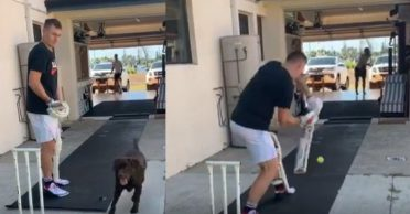 WATCH: Marnus Labuschagne begins practice in his backyard with a tennis ball