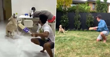 Shreyas Iyer follows Kane Williamson's footsteps, recreates slip catching moment with his dog – WATCH