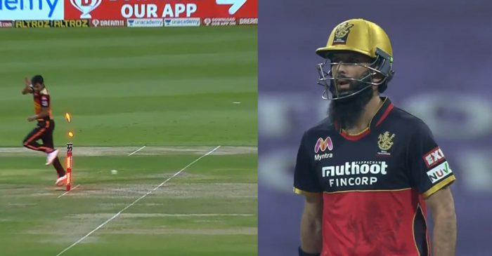 IPL 2020 – WATCH: RCB's Moeen Ali gets run out off a free-hit against SRH; netizens go crazy