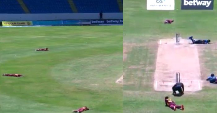 WATCH: A swarm of bees halts play during the third ODI between West Indies and Sri Lanka