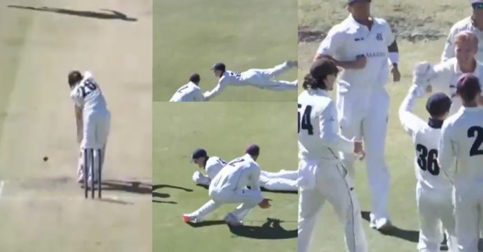 WATCH: Seb Gotch grabs a stunning catch to dismiss Jake Carder in Sheffield Shield 2020-21