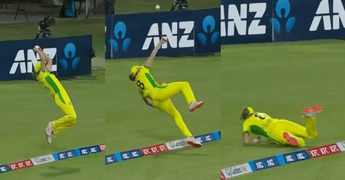 AUSW vs NZW: WATCH – Ellyse Perry's jaw-dropping effort to save a certain six at the boundary rope