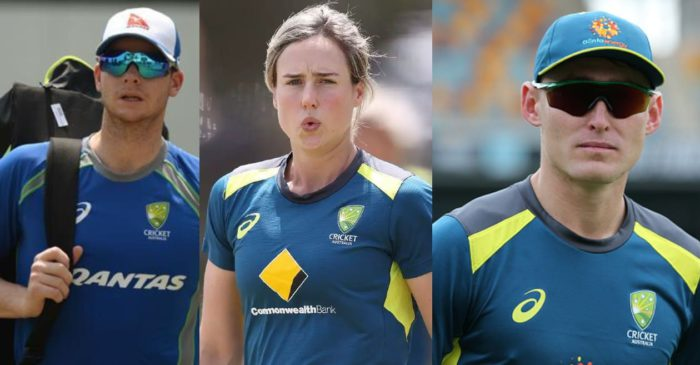 WATCH: Australian cricketers come forward to raise funds for India's fight against COVID-19